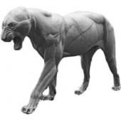 Тигр ТИГРМ-2