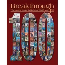 Журнал Breakthrough №100 Зима 2010