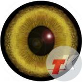 Рысь глаза ТКН-6 22 мм