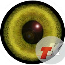Рысь глаза ТКН-5