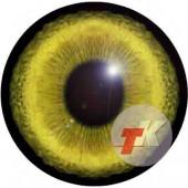 Рысь глаза ТКН-4 24 мм
