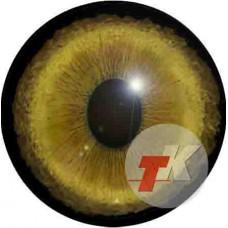 Рысь глаза ТКН-3
