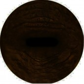 Олень пятнистый глаза ТК-1