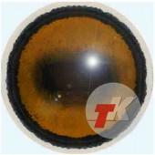 Олень благородный глаза ТК-1