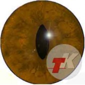 Лиса глаза ТК-3