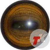 Козерог глаза ТК-1