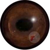 Кабан глаза ТК-2