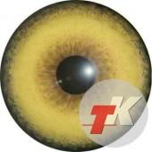 Волк  глаза ТК-2