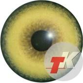Волк  глаза ТК-1