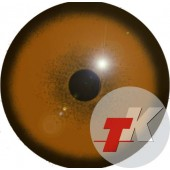 Гепард глаза ТК-1