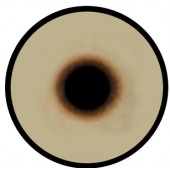 Канюк глаза ТК-1