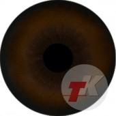 Гиена глаза ТК-1-24