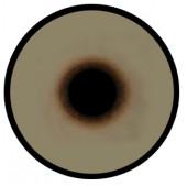 Канюк глаза ТК-3