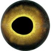 Окунь глаза ТК-2