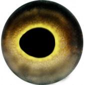 Окунь глаза ТК-4